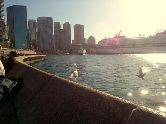 Sydney Opera Terasse